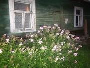 дом с участком в экологически чистом   районе